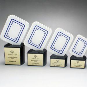Customized Acrylics ALAC0031 – Customization Acrylic