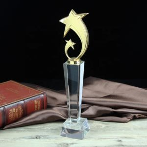 Crystal Trophies ALCR0065 – Crystal Award