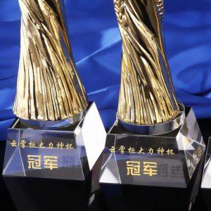 Crystal Trophies ALCR0066 – Crystal Award