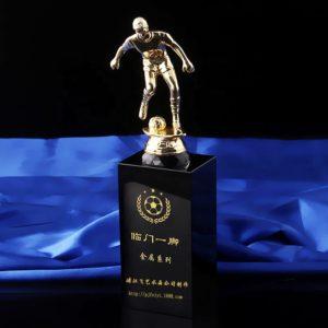 Golden Awards ALGT0044 – Golden Award