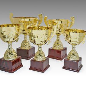 ALMT0013 – Metal Trophy Metal Trophies