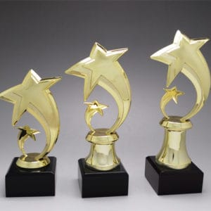 Star Awards ALST0013 – Star Award