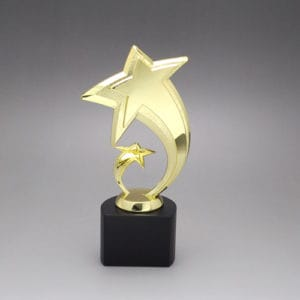 Star Awards ALST0014 – Star Award