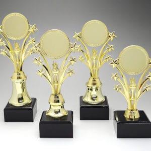 Star Awards ALST0079 – Star Award