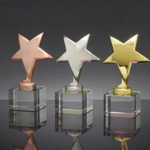 Star Awards ALST0019 – Star Award
