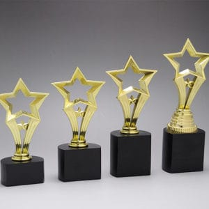 Star Awards ALST0020 – Star Award