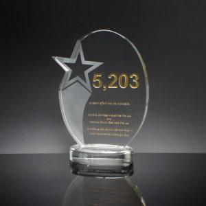 Star Awards ALST0027 – Star Award