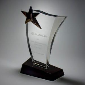 Star Awards ALST0040 – Star Award