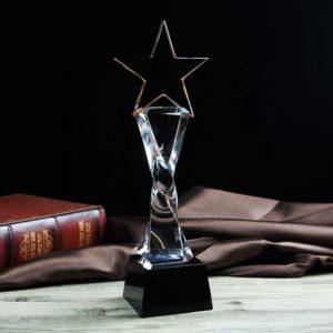 Star Awards ALST0006 – Star Award