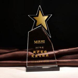 Star Awards ALST0045 – Star Award