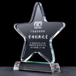Star Awards ALST0048 – Star Award