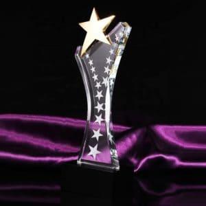 Star Awards ALST0049 – Star Award