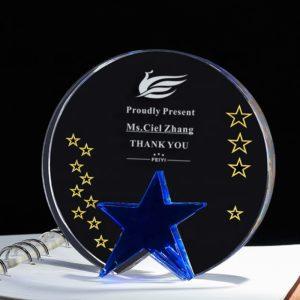 Star Awards ALST0047 – Star Award