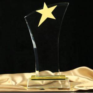 Star Awards ALST0029 – Star Award
